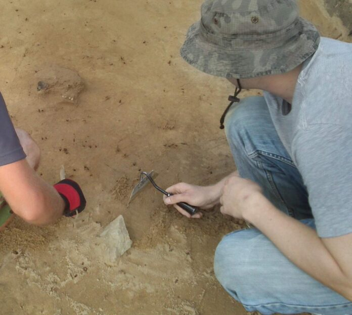badania archeologiczne wykopaliska