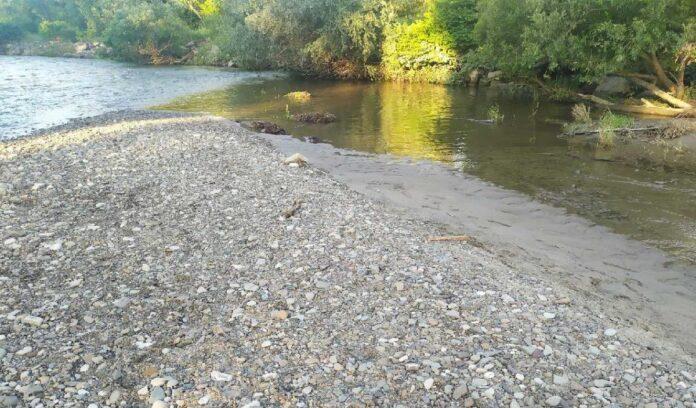 Oświęcim kości w rzece Soła