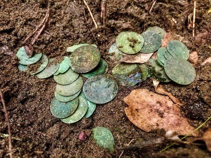 skarb srebrnych monet znaleziony pod Toruniem